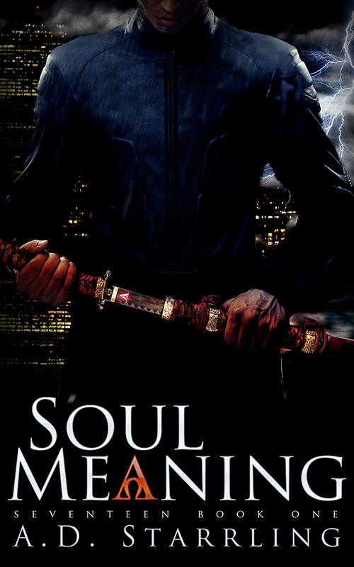 Soul Meaning-800 Cover reveal and Promotional